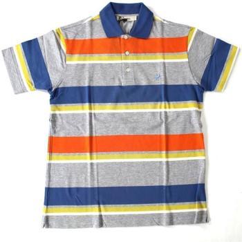 Abbigliamento Uomo Polo maniche corte Ingram ATRMPN-20347 Multicolore