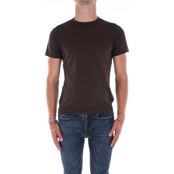 Abbigliamento Uomo Maglioni Jeordie's 60554 Cioccolata