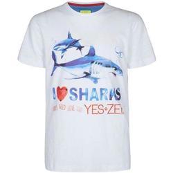 Abbigliamento Bambino T-shirt maniche corte Essenza BLU Bianco