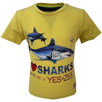 Abbigliamento Bambino T-shirt maniche corte Essenza BLU Giallo