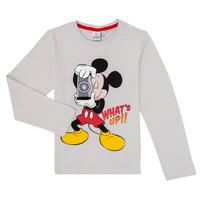 Abbigliamento Bambino T-shirts a maniche lunghe TEAM HEROES MICKEY Grigio