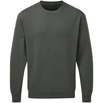 Abbigliamento Uomo Felpe Sg SG20 Carbone