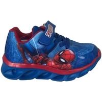 Scarpe Bambino Sneakers basse Spiderman Scarpa Multicolore
