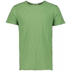 Abbigliamento Uomo T-shirt maniche corte Scout T-shirt M/m  (10184-verde-avocado) Verde