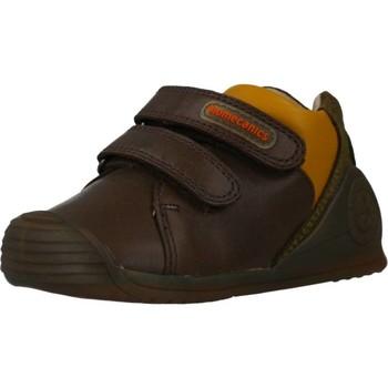Scarpe Bambino Sneakers basse Biomecanics 191155 Marrone