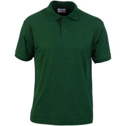 Abbigliamento Uomo Polo maniche corte Absolute Apparel  Verde bottiglia