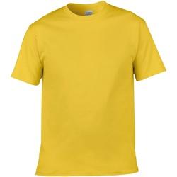 Abbigliamento Uomo T-shirt maniche corte Gildan Soft-Style Giallino