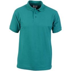 Abbigliamento Uomo Polo maniche corte Absolute Apparel  Smeraldo