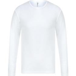 Abbigliamento Uomo T-shirts a maniche lunghe Absolute Apparel  Bianco