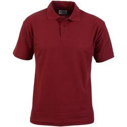 Abbigliamento Uomo Polo maniche corte Absolute Apparel  Bordeaux