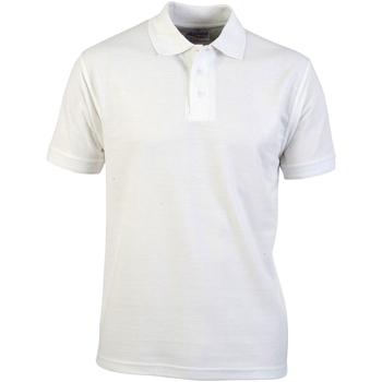 Abbigliamento Uomo Polo maniche corte Absolute Apparel  Bianco