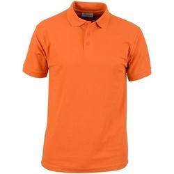 Abbigliamento Uomo Polo maniche corte Absolute Apparel  Arancio