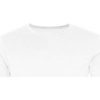 Abbigliamento Uomo T-shirt maniche corte Awdis JT099 Bianco artico