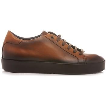 Scarpe Uomo Sneakers basse Corvari - Made In Italy Corvari Scarpe-Sneakers Uomo Cuoio Gela 1215 cuoio