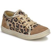 Scarpe Bambina Sneakers basse Pinocchio  Brown