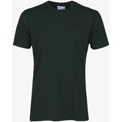 Abbigliamento Uomo T-shirt maniche corte Colorful Standard CLASSIC ORGANIC TEE hunter-green-verde