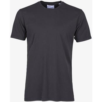 Abbigliamento Uomo T-shirt maniche corte Colorful Standard CLASSIC ORGANIC TEE lava-grey-grigio