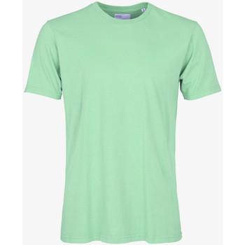 Abbigliamento Uomo T-shirt maniche corte Colorful Standard CLASSIC ORGANIC TEE faded-mint