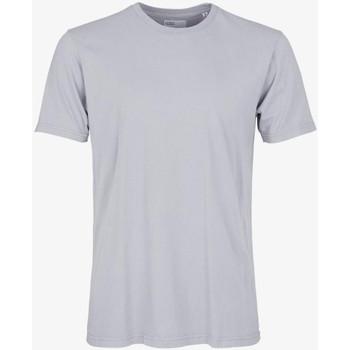 Abbigliamento Uomo T-shirt maniche corte Colorful Standard CLASSIC ORGANIC TEE limestone-grey