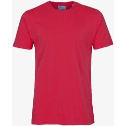 Abbigliamento Uomo T-shirt maniche corte Colorful Standard CLASSIC ORGANIC TEE scarlet-red