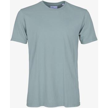 Abbigliamento Uomo T-shirt maniche corte Colorful Standard CLASSIC ORGANIC TEE steel-blue