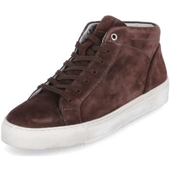 Scarpe Uomo Sneakers alte Sioux 38192 Marrone