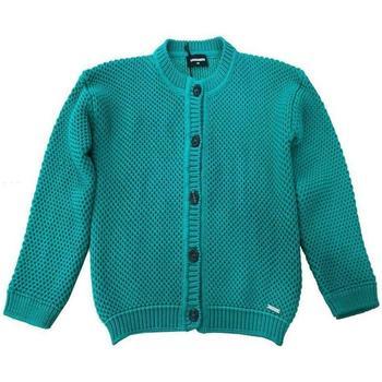 Abbigliamento Bambino Gilet / Cardigan Dsquared DQ02A4-D00MH Verde