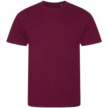 Abbigliamento Uomo T-shirt maniche corte Ecologie EA001 Bordeaux