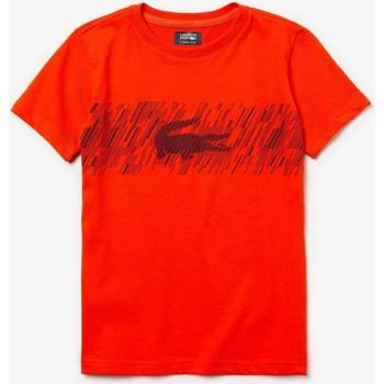 Abbigliamento Unisex bambino T-shirt maniche corte Lacoste TJ6762