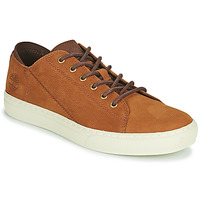 Scarpe Uomo Sneakers basse Timberland ADV 2.0 CUPSOLE MODERN OX Cognac