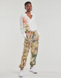 Abbigliamento Donna Pantaloni morbidi / Pantaloni alla zuava Desigual TOUCHE Beige
