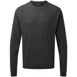 Abbigliamento Felpe Premier PR692 Carbone