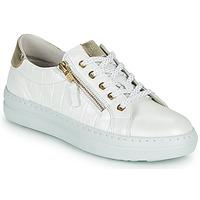 Scarpe Donna Sneakers basse Dorking VIP Bianco / Argento