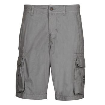 Abbigliamento Uomo Shorts / Bermuda Napapijri NORI Grigio