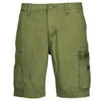 Abbigliamento Uomo Shorts / Bermuda Napapijri NOSTRAN Verde