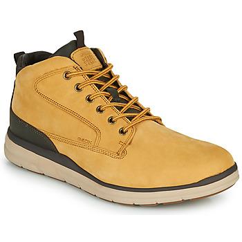 Scarpe Uomo Sneakers alte Geox U HALLSON Marrone