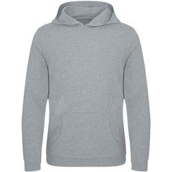 Abbigliamento Uomo Felpe Ecologie EA040 Screziato