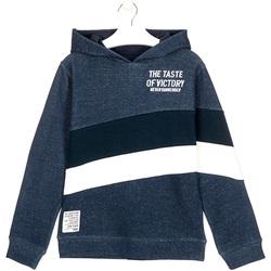 Abbigliamento Unisex bambino Felpe Losan 023-6002AL Blu