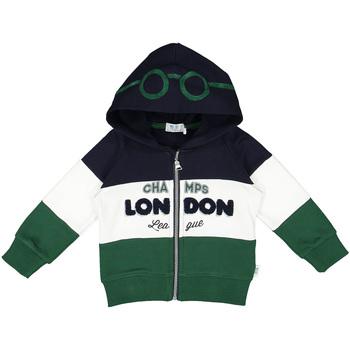 Abbigliamento Unisex bambino Felpe Melby 20D0210 Verde