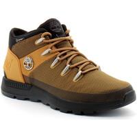 Scarpe Uomo Sneakers alte Timberland Sprint Trekker Mid Marron