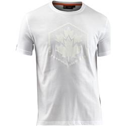 Abbigliamento Uomo T-shirt maniche corte Lumberjack CM60343 005 514 Bianco