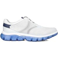Scarpe Uomo Sneakers basse CallagHan 42700 Bianco