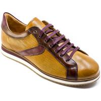Scarpe Uomo Sneakers basse Exton 831 Marrone