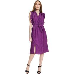 Abbigliamento Donna Abiti lunghi Gaudi 011BD15004 Viola