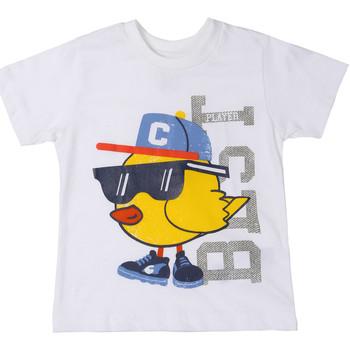 Abbigliamento Unisex bambino T-shirt maniche corte Chicco 09006918000000 Bianco