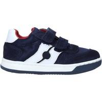Scarpe Unisex bambino Sneakers Falcotto 2014666 01 Blu