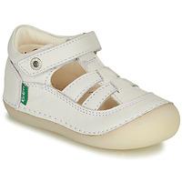 Scarpe Bambina Ballerine Kickers SUSHY Bianco