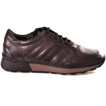 Scarpe Uomo Sneakers basse Soldini 20630 2 Marrone