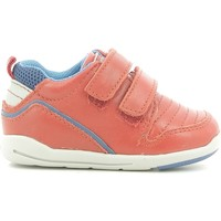 Scarpe Unisex bambino Sneakers basse Chicco 01056499000000 Rosso