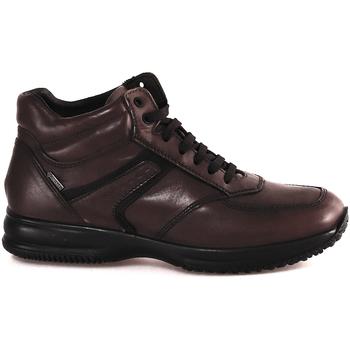 Scarpe Uomo Sneakers alte IgI&CO 2120911 Marrone